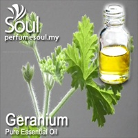 Pure Essential Oil Geranium - 50ml