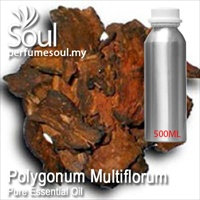 Pure Essential Oil Polygonum Multiflorum - 500ml